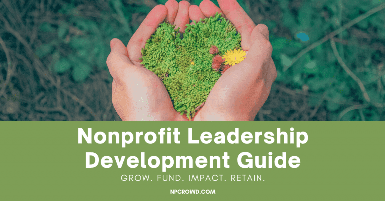 Top 8 Nonprofit Leadership Skills You Must Have [Leadership Development]