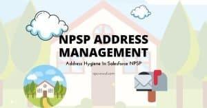 Salesforce NPSP Address Management